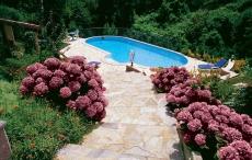 Hortenziás kertben